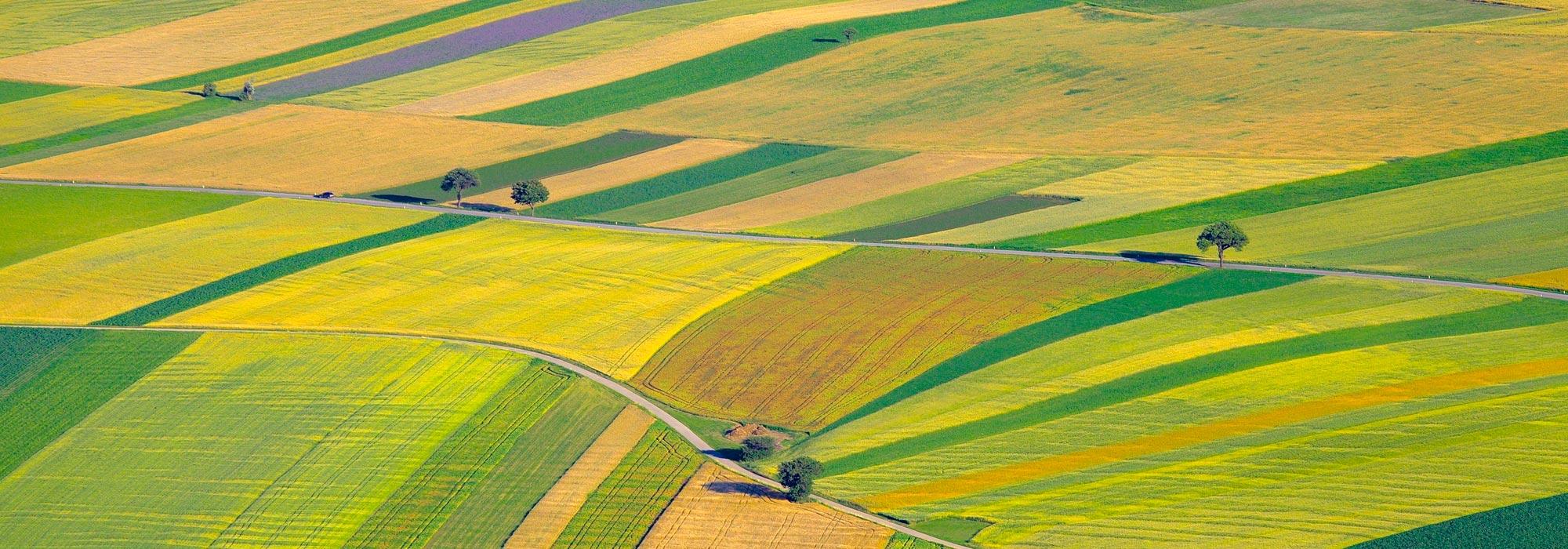 Landbouwgronden