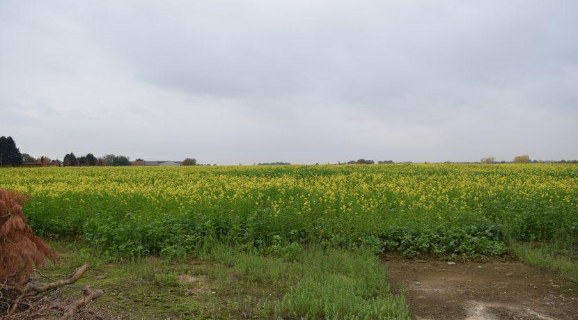 coenen-lv-outgaarden-019