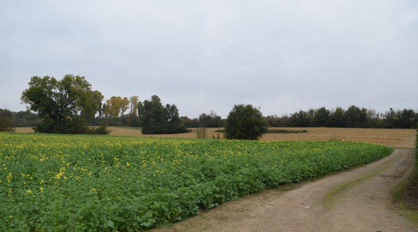 coenen-lv-outgaarden-021