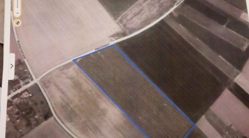 Drieslinter Hoge Kouter Zoutleeuw 5 E 1 L 3