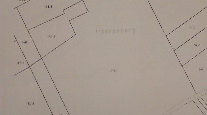 Melkwezer Haesenberg B 45 plan