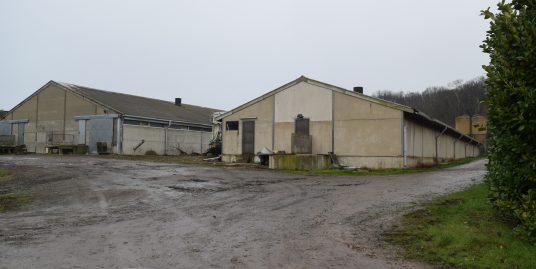 Varkensbedrijf te Beauvechain