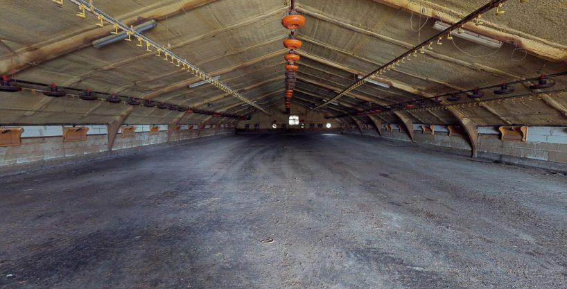 Kippenbedrijf voor 78.000 mestkippen te Deurne-Diest