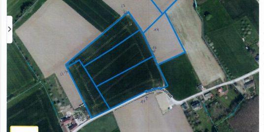 Landbouwgrond Bunsbeek
