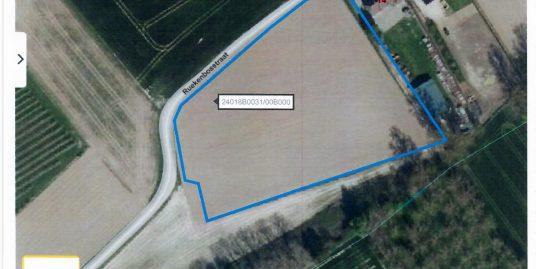 Landbouwgrond Te koop Glabbeek